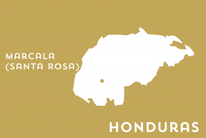 Karte Honduras - SANTA ROSA