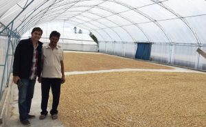 Trockenplatz Global Netwings, Sumatra, , TOBA Kaffee, Cross Coffee Kaffeerösterei aus Bremen