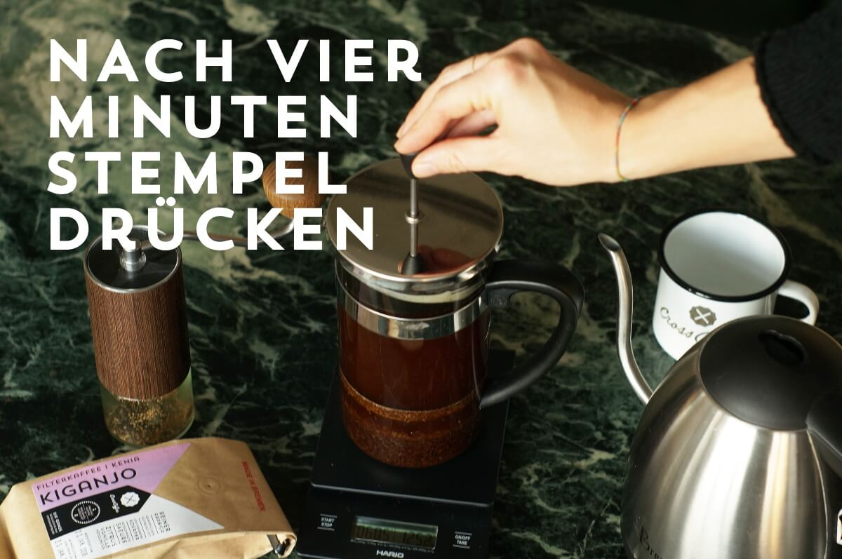 Kaffeezubereitung French Press, Schritt 4: Nach 4 Minuten das Metallsieb herunterdrücken
